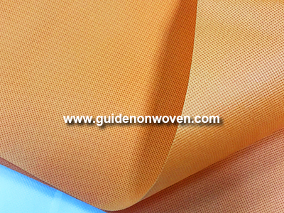 Pp Spunbond Nonwoven Agriculture Wholesale China