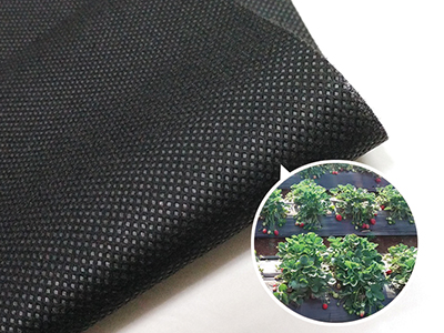 Agricultural PP Ground Cover Fabric Anti Grass Cloth